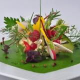 cuisine legume