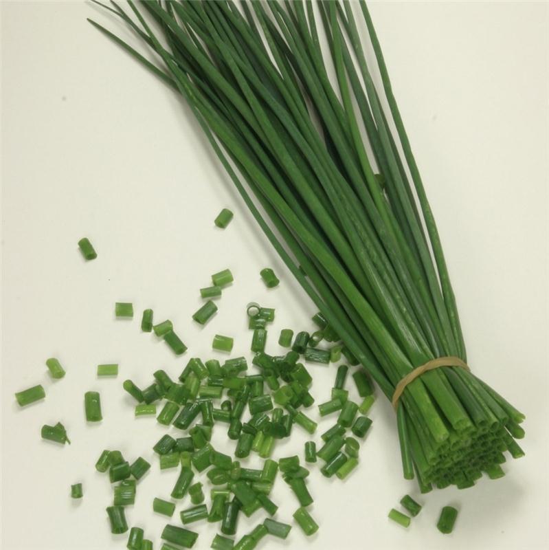 herbes epices herbes aromatiques ciboulette bienfait. Black Bedroom Furniture Sets. Home Design Ideas